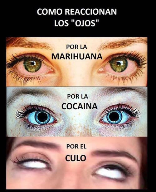 Cómo reaccionan los ojos